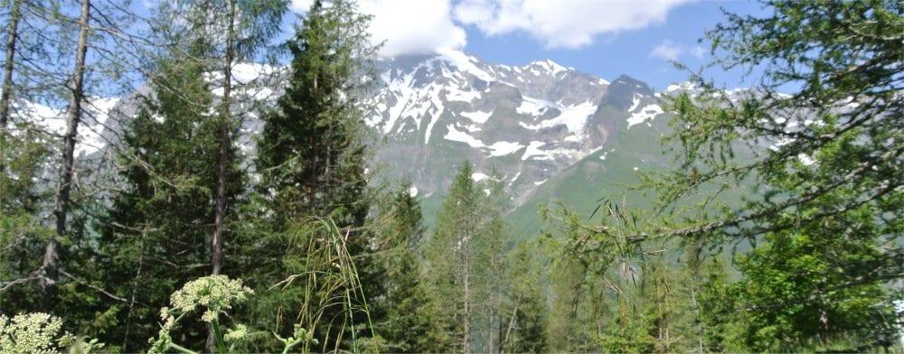 Kitzbuhel: Alpine view