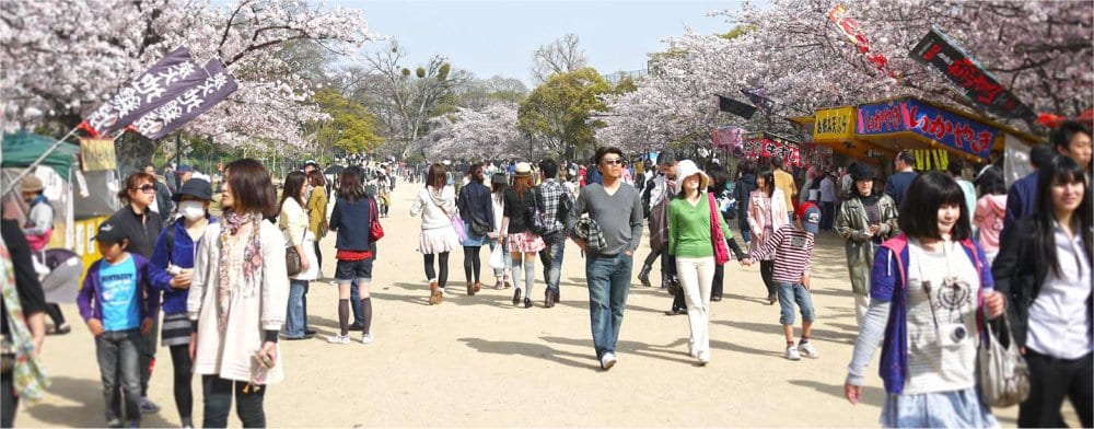 Fukuoka: Cherry blossom seasson in the park