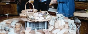 Tours: Cheese Shop