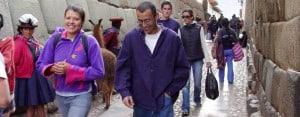 Cusco: Llamas