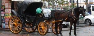 Seville: Carriage